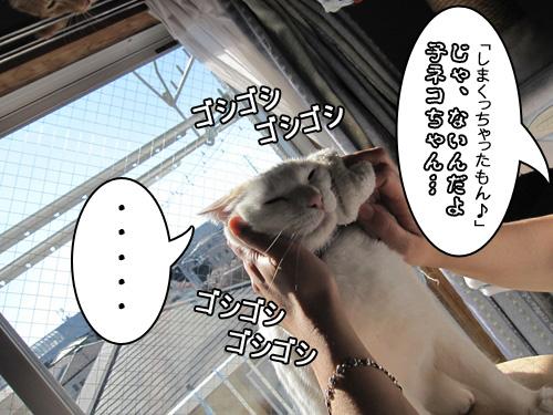 Img_3897_r