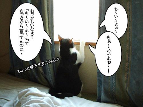 2010_0305_065041aa_r