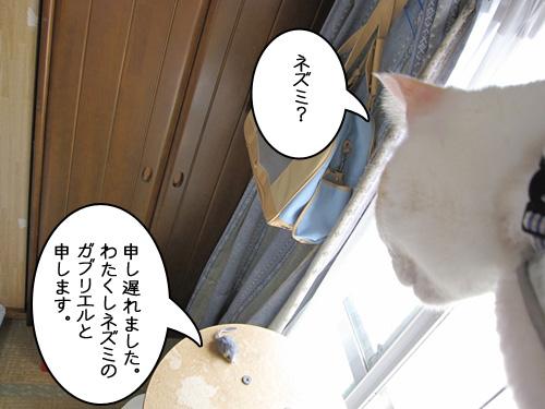 Img_6459_r