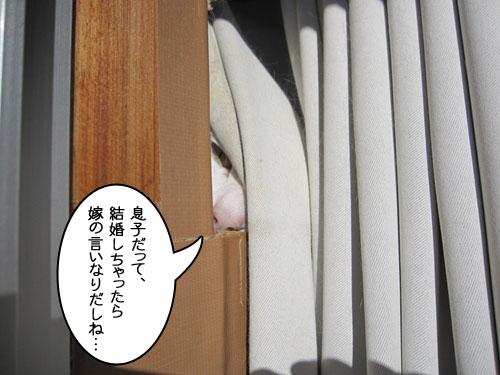 Img_7155_r