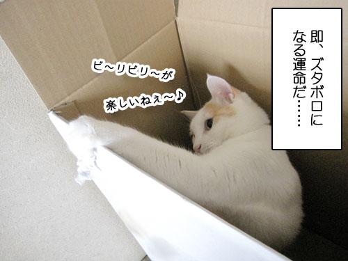 Img_1106207