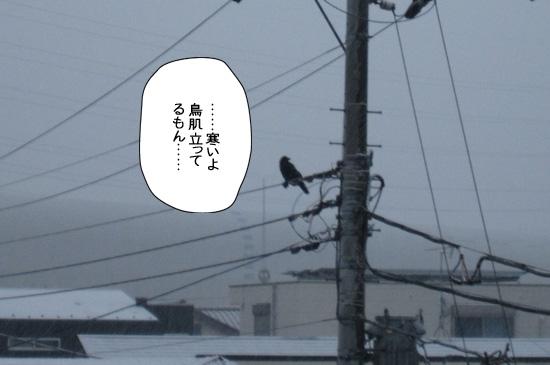 Img_201301302